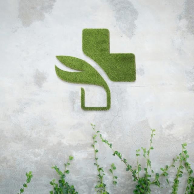 logo vegetal synthetique - 1