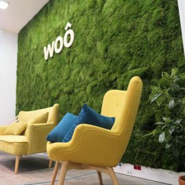 mur vegetal stabilise avec logo - 3