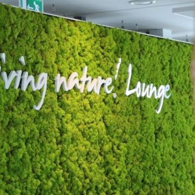 mur vegetal stabilise avec logo - 1