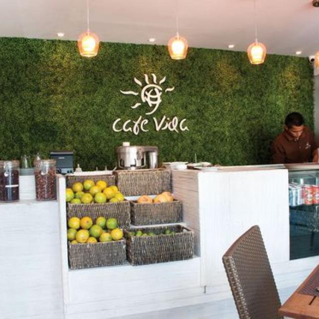 mur vegetal stabilise avec logo - 5