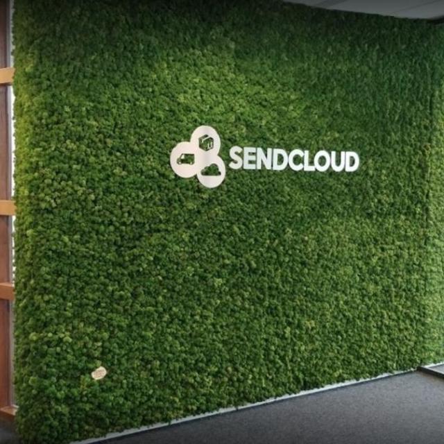 mur vegetal stabilise avec logo - 8
